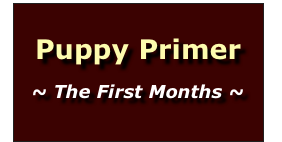 Puppy Primer