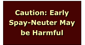 Caution: Early Spay-Neuter May be Harmful