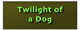 Twilight of 