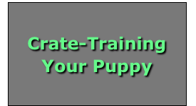 Crate-Training