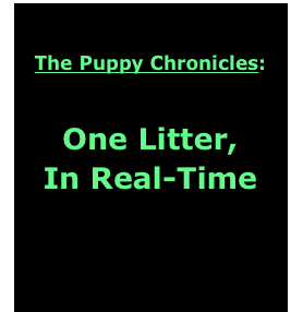 The Puppy Chronicles: 